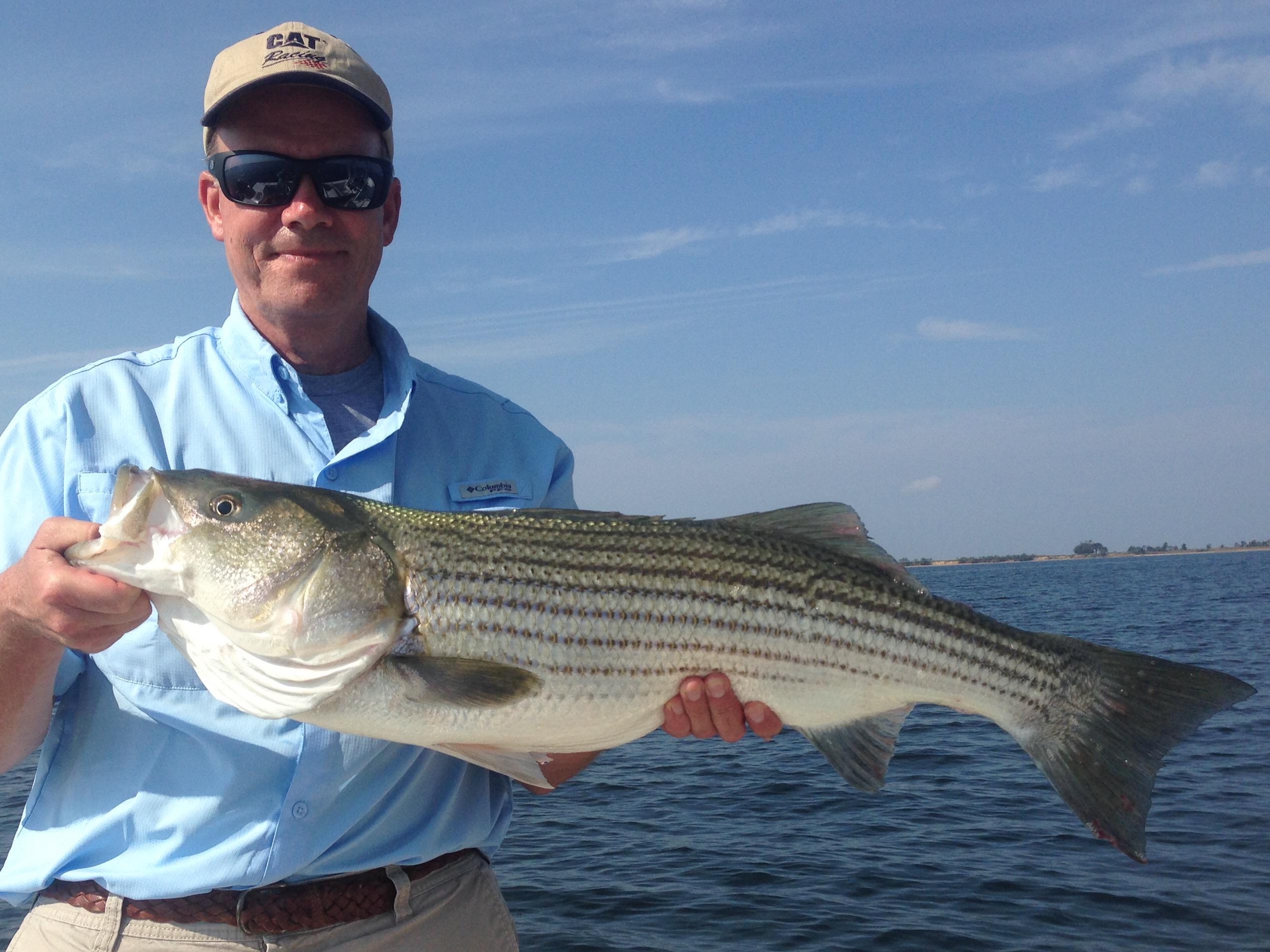 10 22 16 fly fish the chesapeake bay for Fishing chesapeake bay